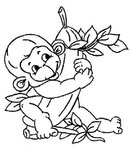 Imagens de macacos e gorilas para imprimir e colorir - 13