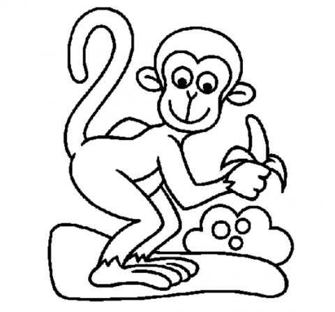 Imagens de macacos e gorilas para imprimir e colorir - 27