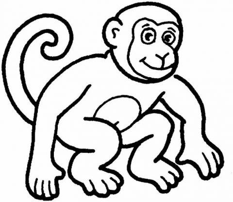 Imagens de macacos e gorilas para imprimir e colorir - 28