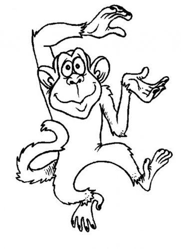 Imagens de macacos e gorilas para imprimir e colorir - 3