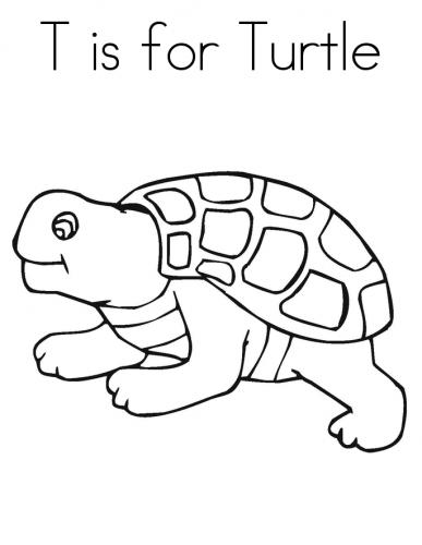Imagens de tartarugas para imprimir e colorir - 4
