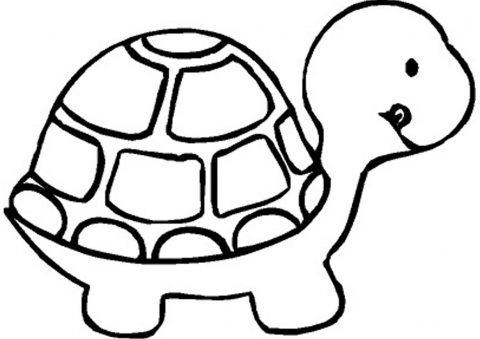 Imagens de tartarugas para imprimir e colorir - 9