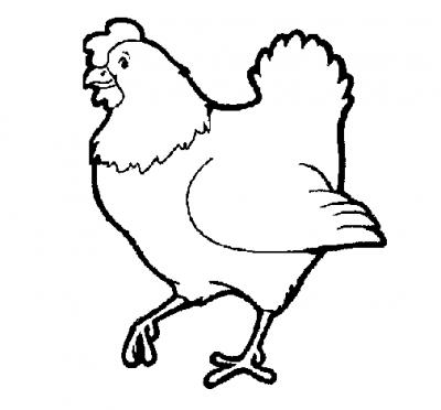 Imagens de galinhas e pintainhos para imprimir e colorir 4