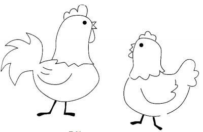 Imagens de galinhas e pintainhos para imprimir e colorir 6
