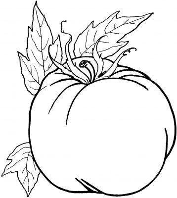 Imagens de legumes e verduras para imprimir e colorir 21
