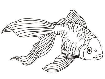 Imagens de peixes para imprimir e pintar- 3