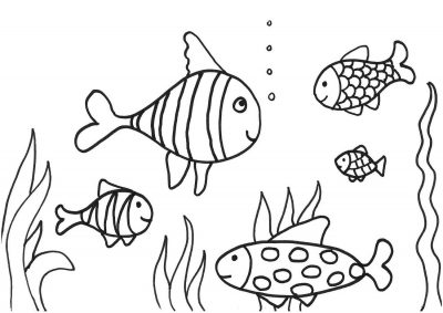 Imagens de peixes para imprimir e pintar- 4
