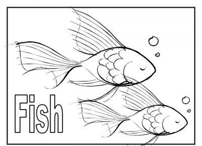 Imagens de peixes para imprimir e pintar- 7