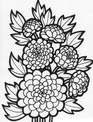 Imagens de plantas para imprimir e colorir 11
