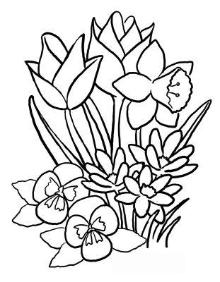 Imagens de plantas para imprimir e colorir 3