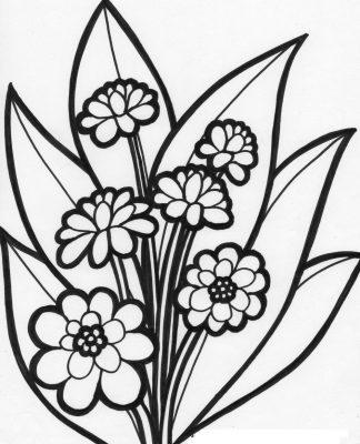 Imagens de plantas para imprimir e colorir 5