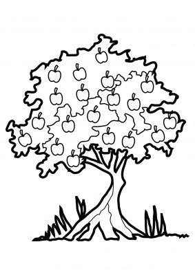 Imagens de árvores para imprimir e colorir - 10