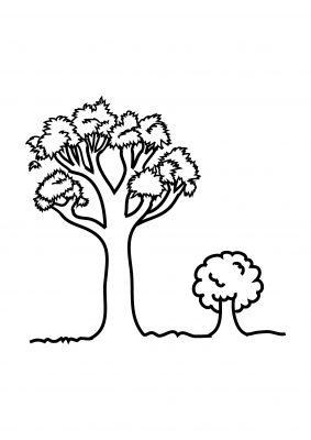 Imagens de árvores para imprimir e colorir - 16