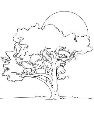 Imagens de árvores para imprimir e colorir - 17
