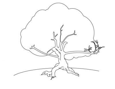 Imagens de árvores para imprimir e colorir - 18