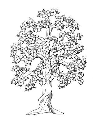 Imagens de árvores para imprimir e colorir - 19