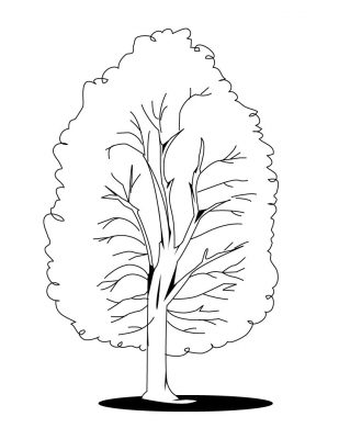 Imagens de árvores para imprimir e colorir - 21