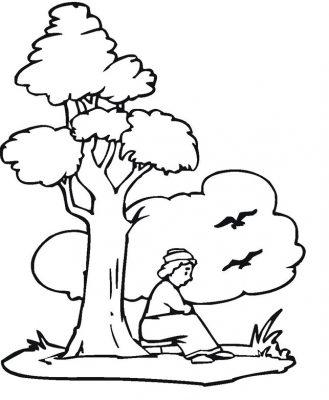 Imagens de árvores para imprimir e colorir - 8