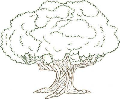 Imagens de árvores para imprimir e colorir - 9