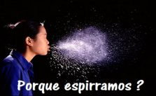 Espirros