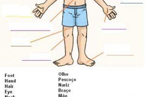 Atividades de Inglês com o corpo humano