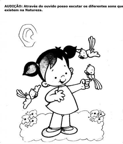 Atividades para educação infantil Os 5 sentidos