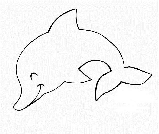 Golfinhos para colorir