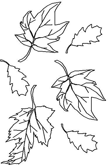 imagens de folhas para imprimir e colorir fichas e atividades