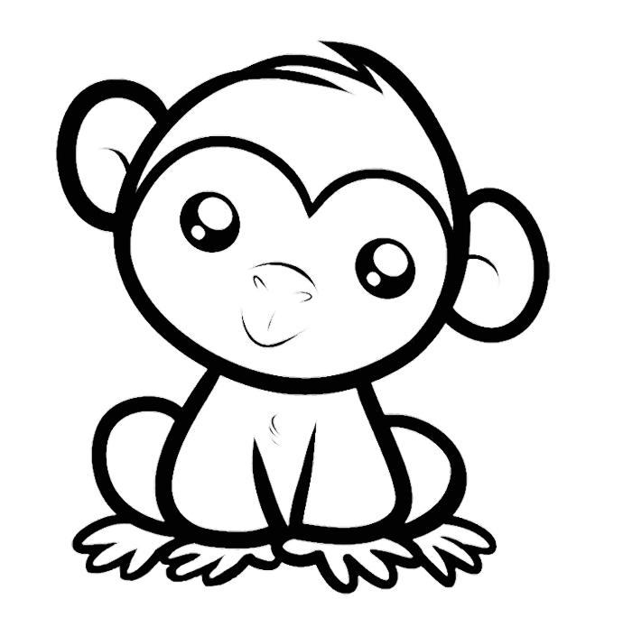 Imagens de macacos e gorilas para