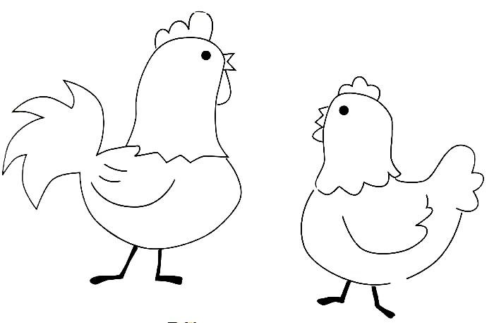 imagens de galinhas e pintainhos para imprimir e colorir fichas e