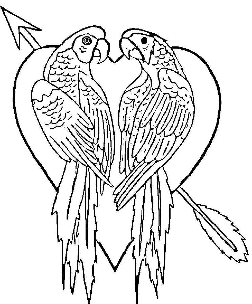 Imagens De Papagaios E Araras Para Imprimir E Colorir 10 Fichas