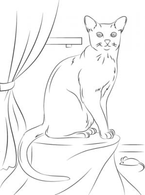 Imagens de gatos para imprimir e colorir
