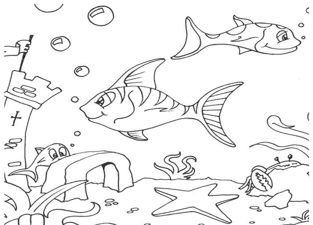 Imagens do mar para imprimir e colorir