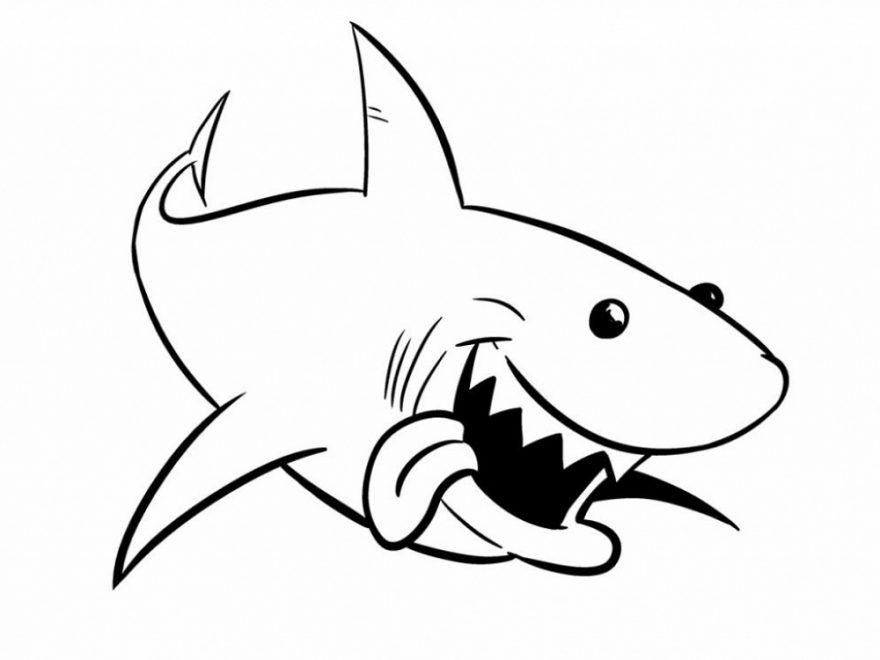 Imagens de tubarões para imprimir e colorir