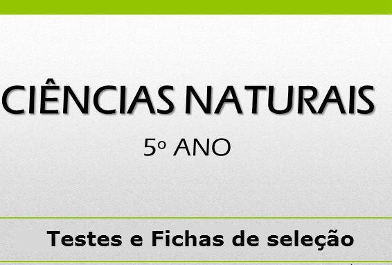 Testes de Ciências Naturais 5º ano – 2º Ciclo