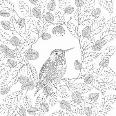 reino animal livro de colorir jardim secreto antistress fichas e atividades. Black Bedroom Furniture Sets. Home Design Ideas