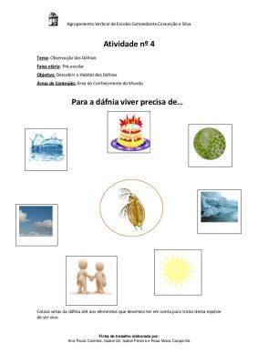 Atividades sobre o projeto Daphnia (Dáfnia)