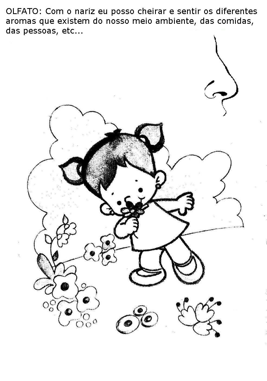 Favoritos Atividades para educação infantil - Os 5 sentidos - Fichas e  BI59