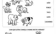 Atividades pré-escolar Animais