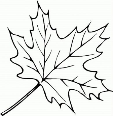 Desenhos para imprimir e colorir as cores do Outono