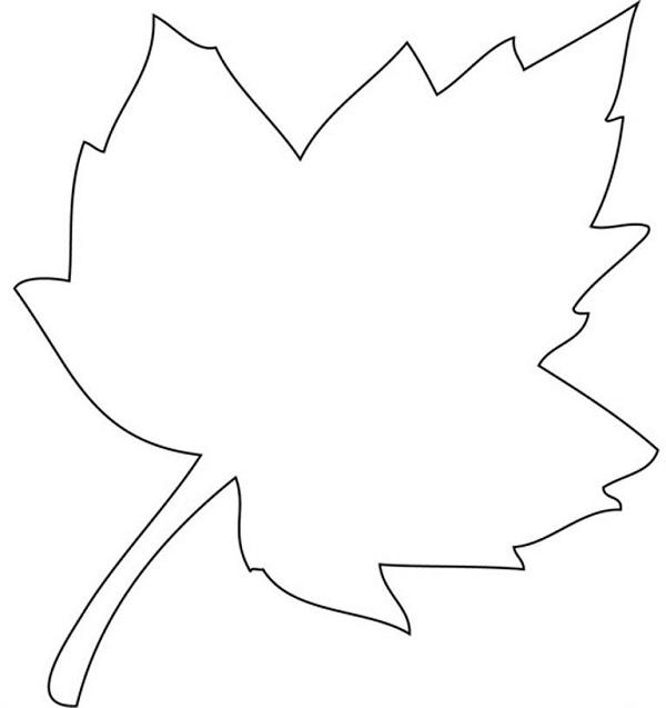 Desenhos Para Imprimir E Colorir As Cores Do Outono Educacao Online
