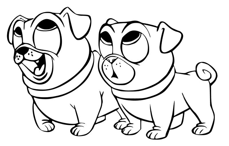Desenhos Para Colorir Pets