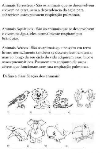 Animais Terrestres, Aquáticos e Aéreos