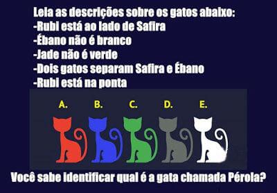 Enigmas para um Natal para a família - Enigma dos gatos